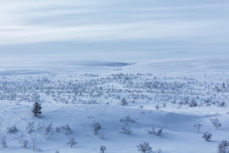 winter_hiress-13.jpg