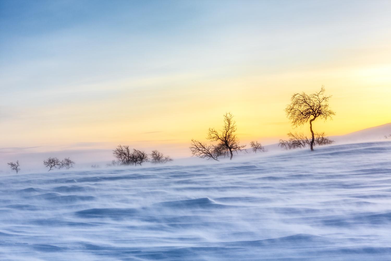 arctic_desert-28.jpg