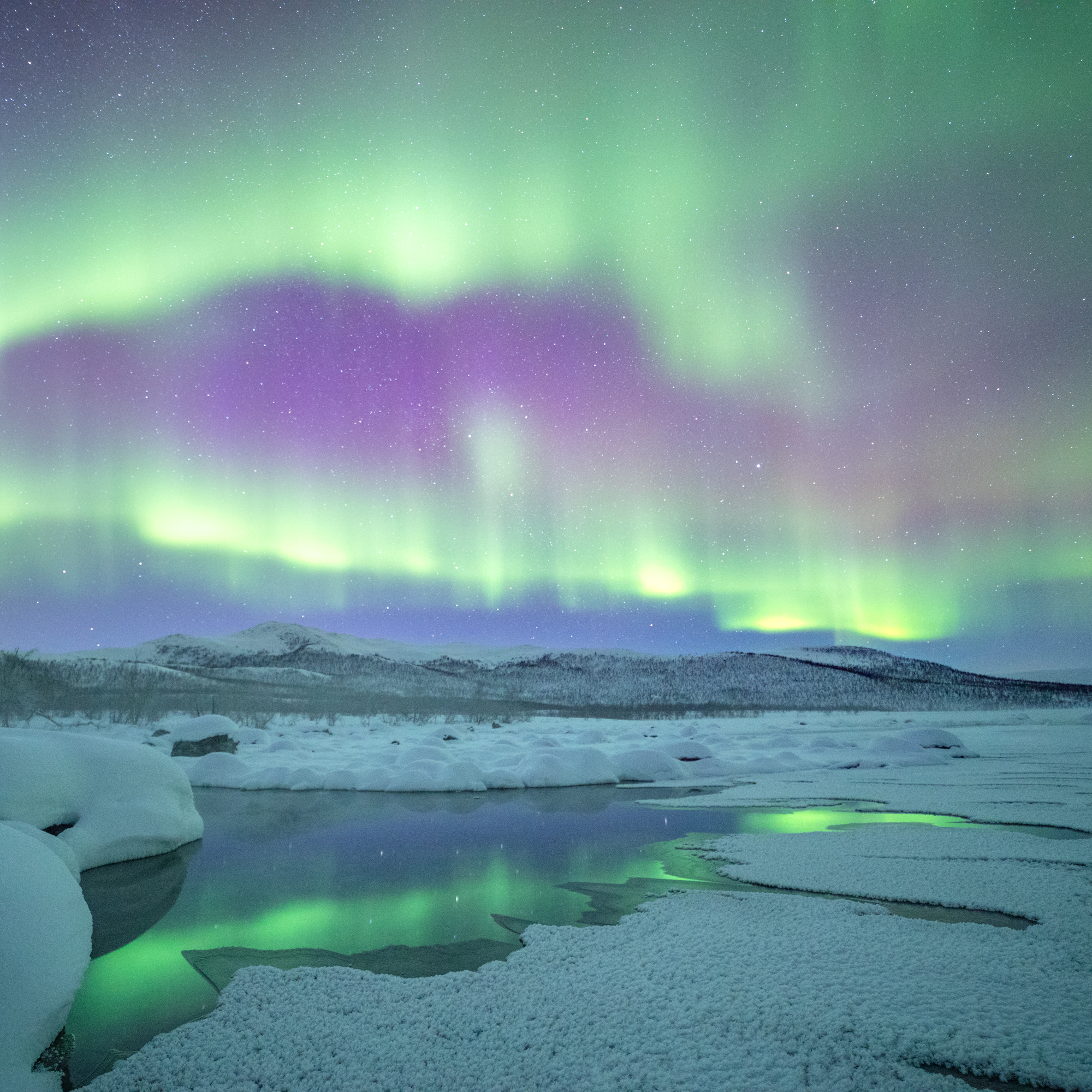 arctic_northernlights.jpg