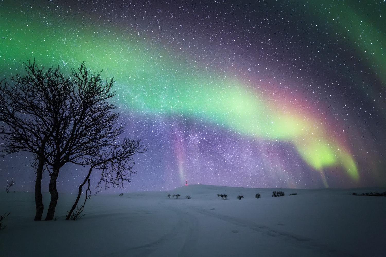 aurora_northernmost_photography.jpg