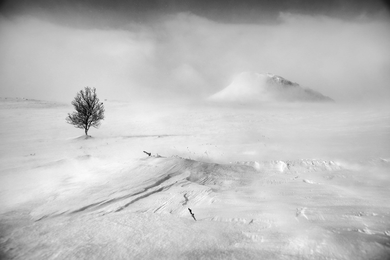 winter_desert_photography_workshop.jpg