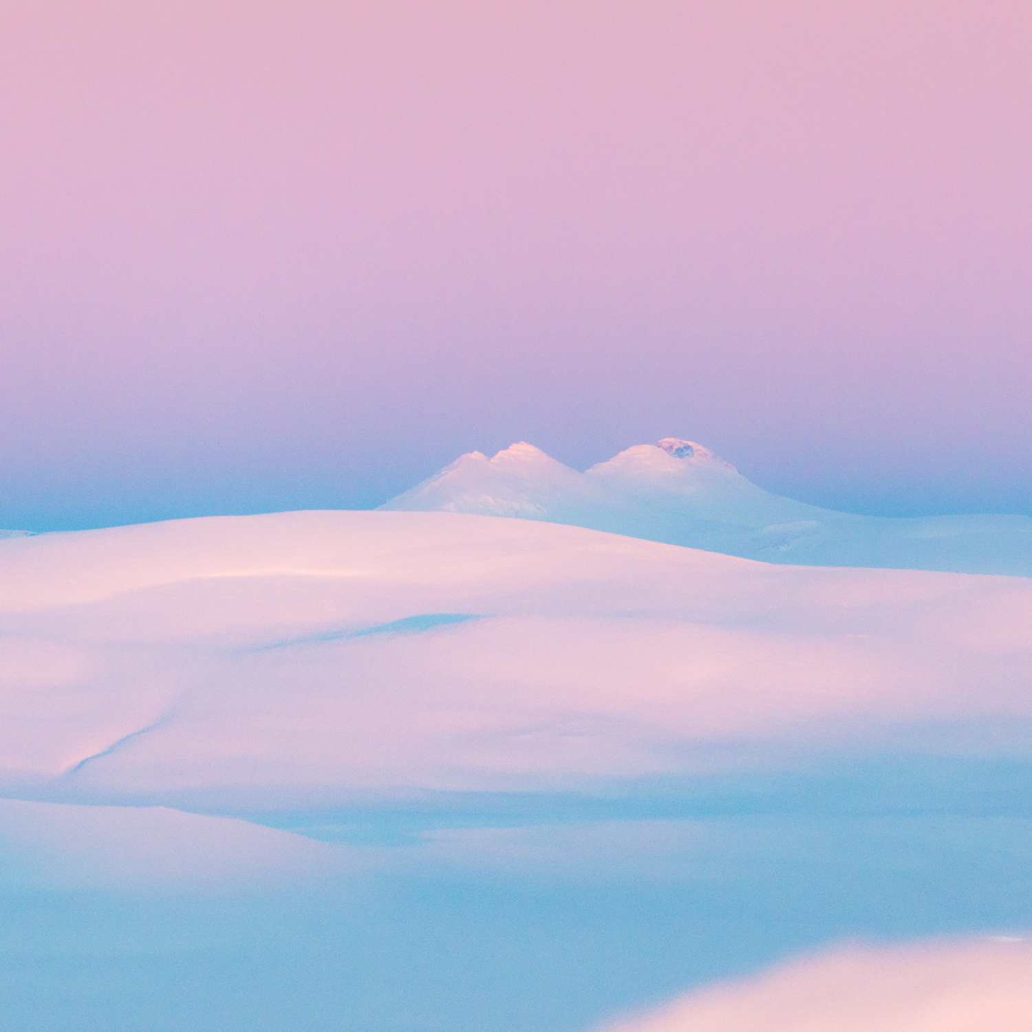 polar_night_pink_photography.jpg