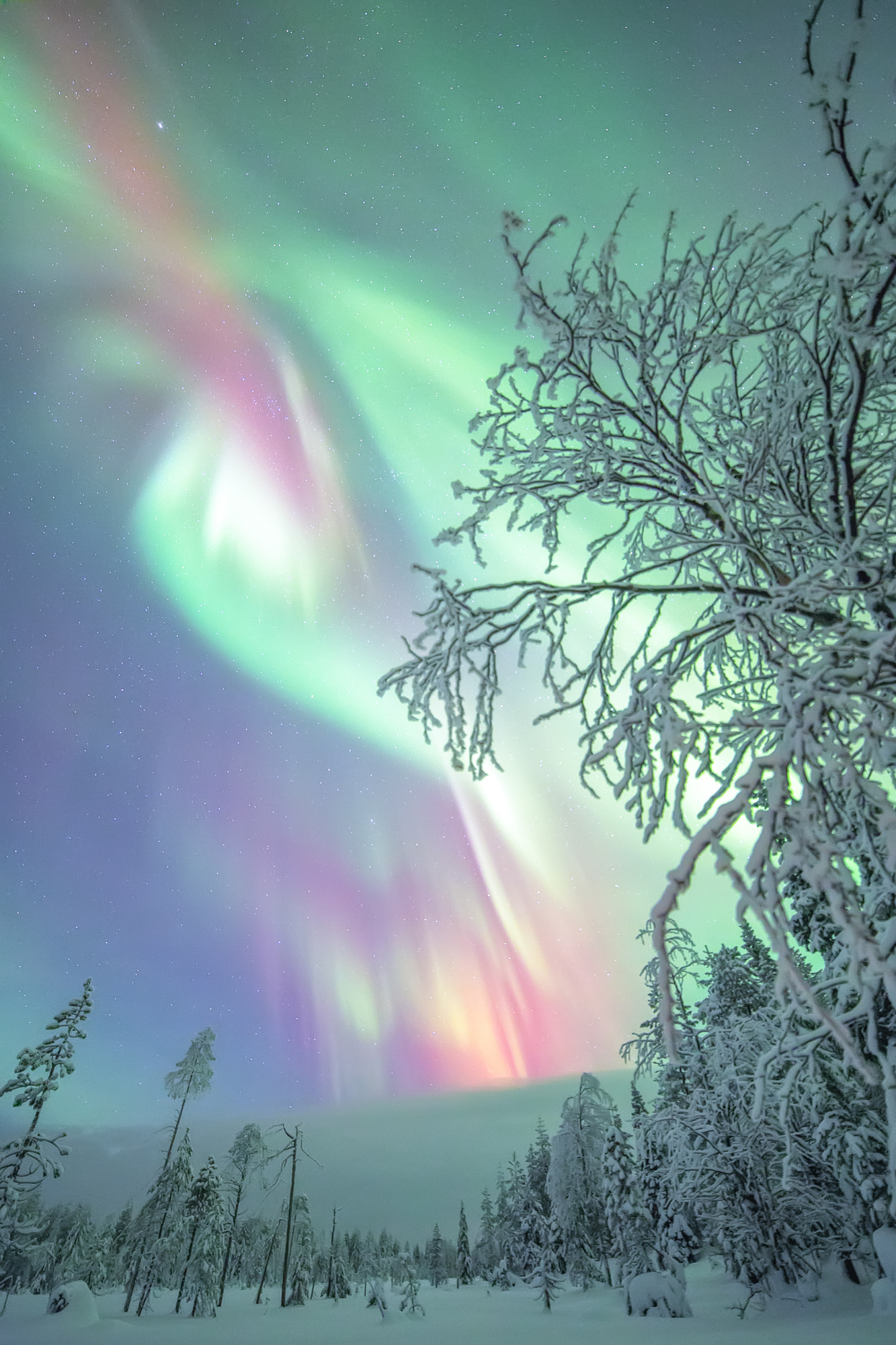 northern_lights_aurora_borealis_photo.jpg