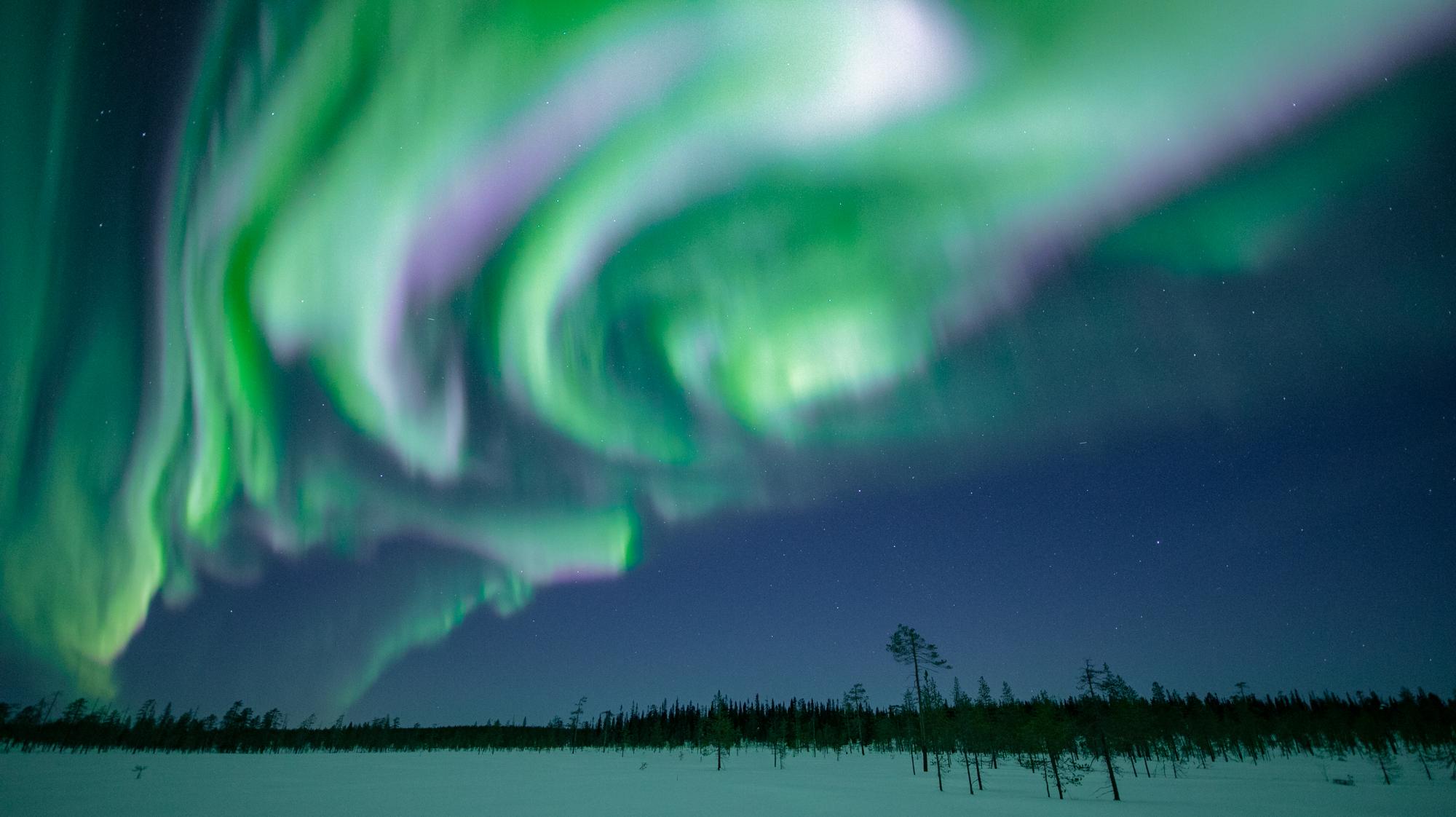 northern_lights_lapland.jpg
