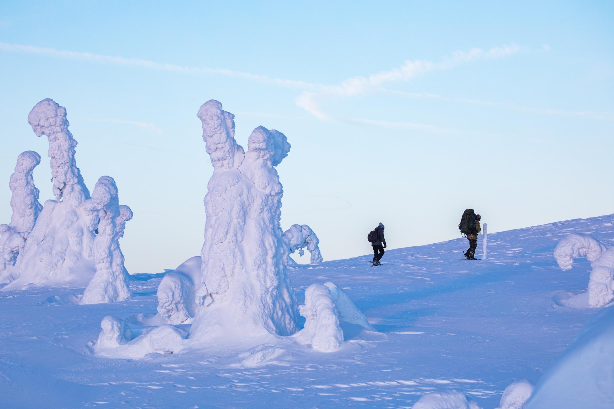 snowy_landscape.jpg