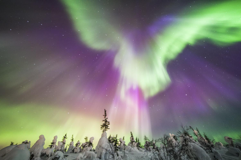 northern_lights_auroraborealis.jpg