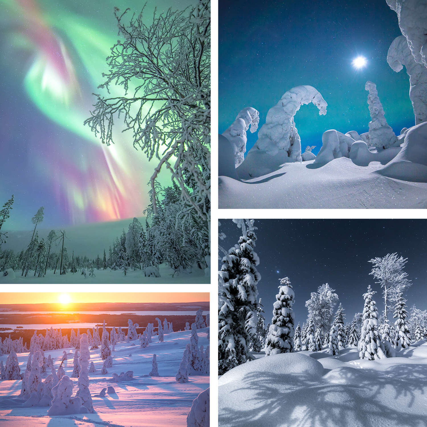 LAPLAND PHOTO WORKSHOP - WINTER WONDERLAND - Jan 13th-19th 2020Photography workshops in Lapland offers untouched winter landscapes to discover!