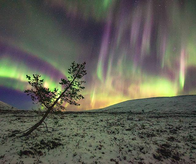 Fiery skies at Pallas fells!  #harriniva #torassieppi #onlyinlapland #visitfinland #ig_photostars #ig_finland #coloursofnature #auroraborealis #longexposhots #lapland #bestinwilderness