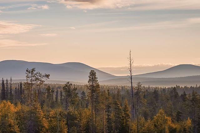 Morning vibes in Muonio  #harriniva #torassieppi #visitfinland #visitlapland #ourlapland #pallasyllasnationalpark #ig_finland #ig_scandinavia #fromwhereidrone #suomiretki #lapland