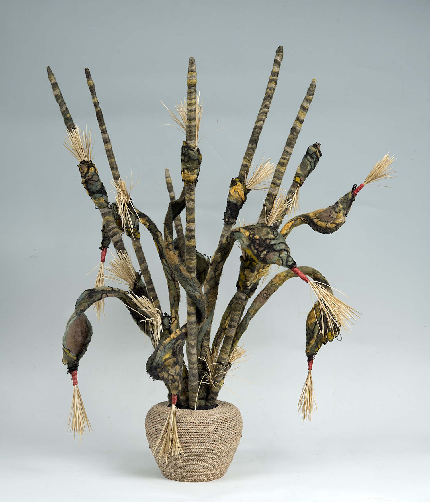 cobra grass 'charmer'   handmade felt, mixed media  30 x23 x15