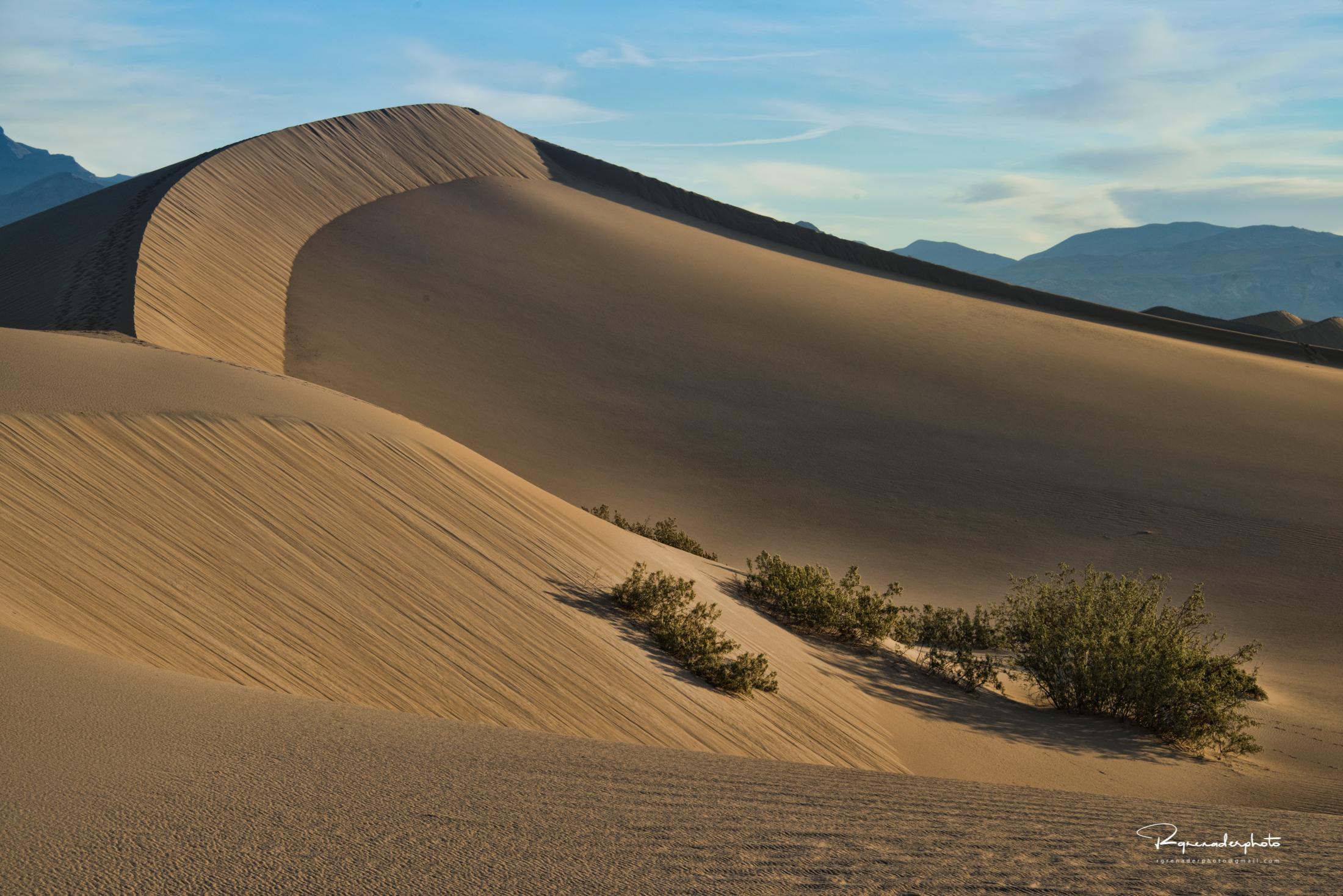Mesquite Dunes Death Valley, Ca