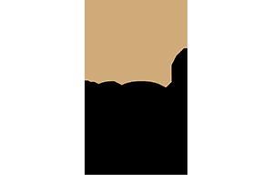 ROI logo.png