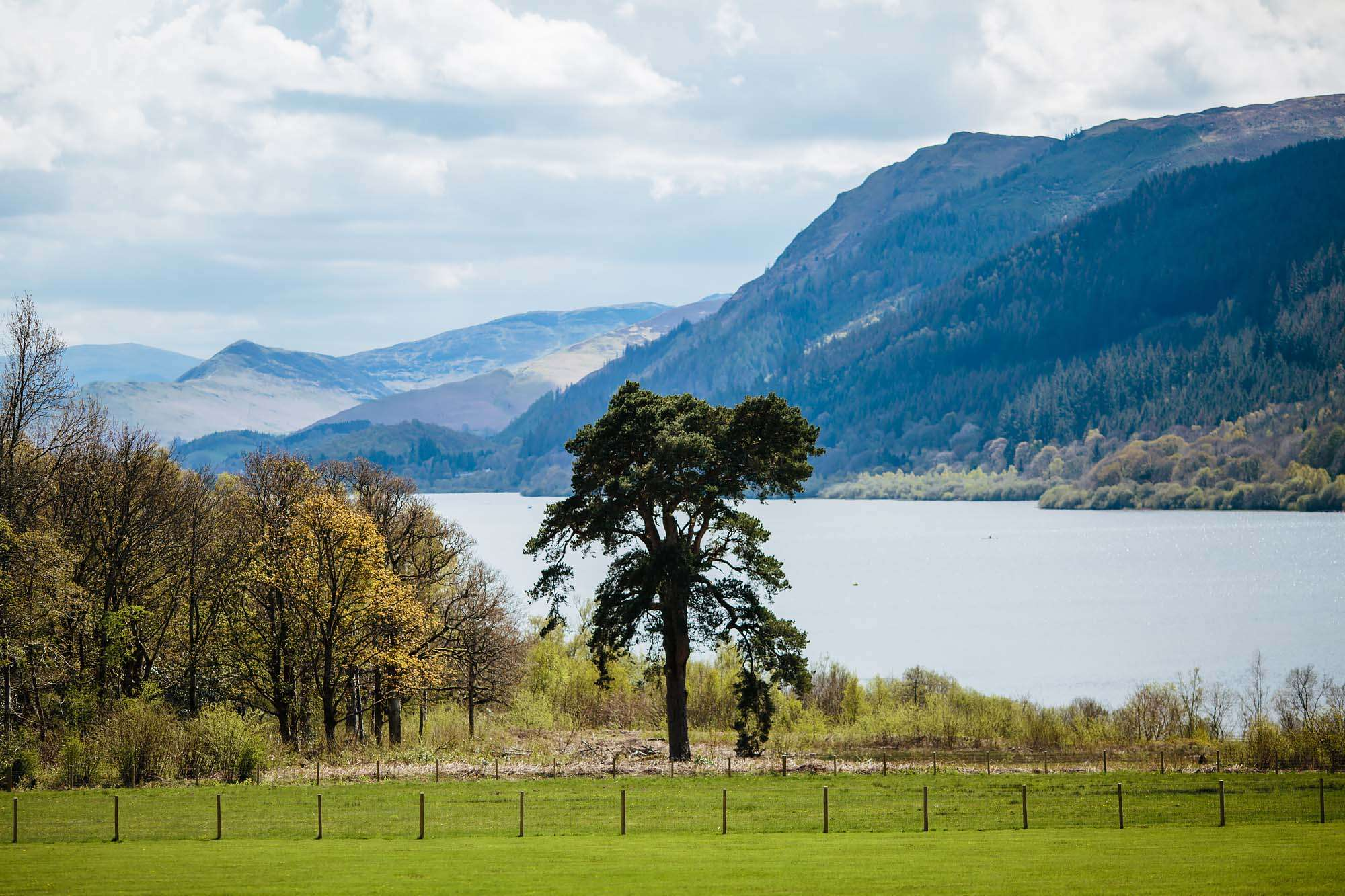 Lake Bassenthwaite in the sunshine wedding