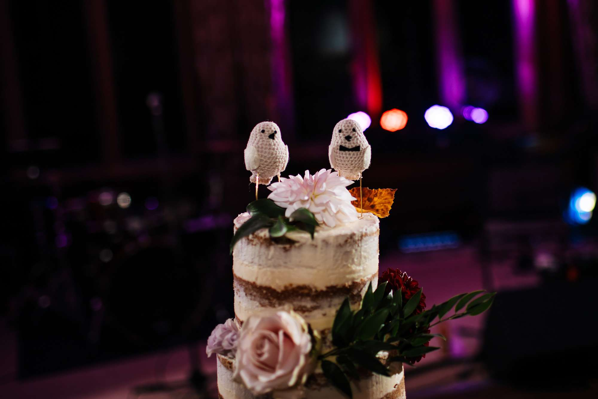 Close up of two knitted birds on a wedding cake