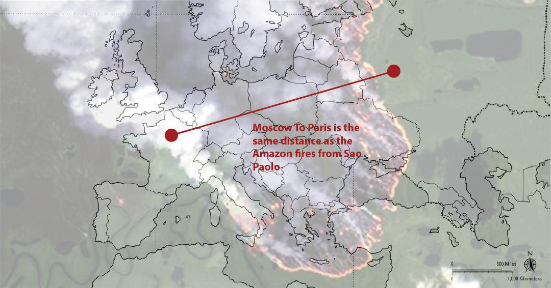 The fires raged so violently that they blocked the sun in Sao Paolo - the same distance between Moscow and Paris.