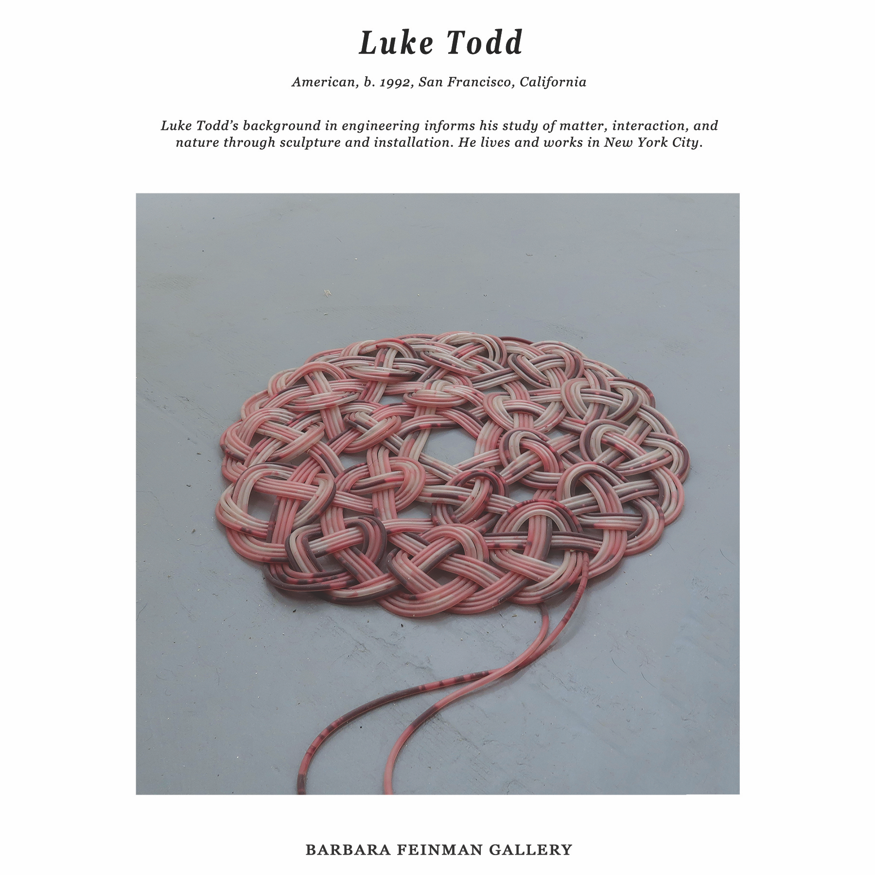 bf presents works Luke Todd.png