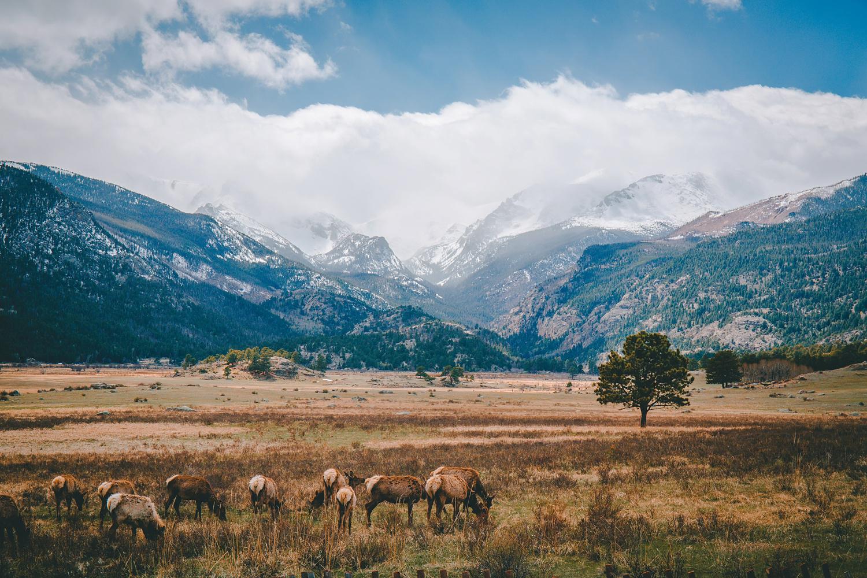 Colorado-Trip-136.jpg