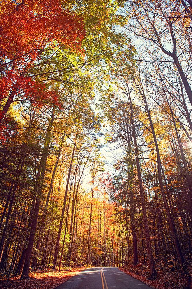 gatlinburg-fall.jpg