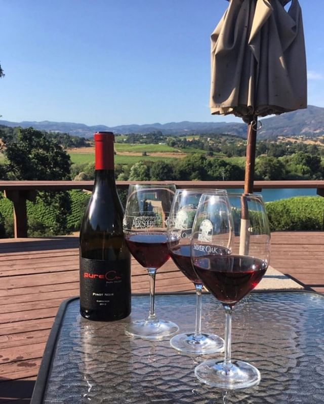 An every day wine that pairs with so many different kinds of food, this Pinot Noir from pureCru is a medium full bodied wine that holds scents of roses, spices and rich earth-mineral notes. PC: @lacymichelle10 • • • • • #napavalley #napa #winecountry #vino #wine #winetour #pinotnoir #bestwine #drink #whitewine #redwine #vineyard #sparklingwine #rose #roseallday #vineyards #wineo #winetourists #winenot #winestagram #wineconsumer #redwinelovers #whitewinelovers #butfirstwine #wineaboutit #huffposttaste #foodandwine #goodtimes