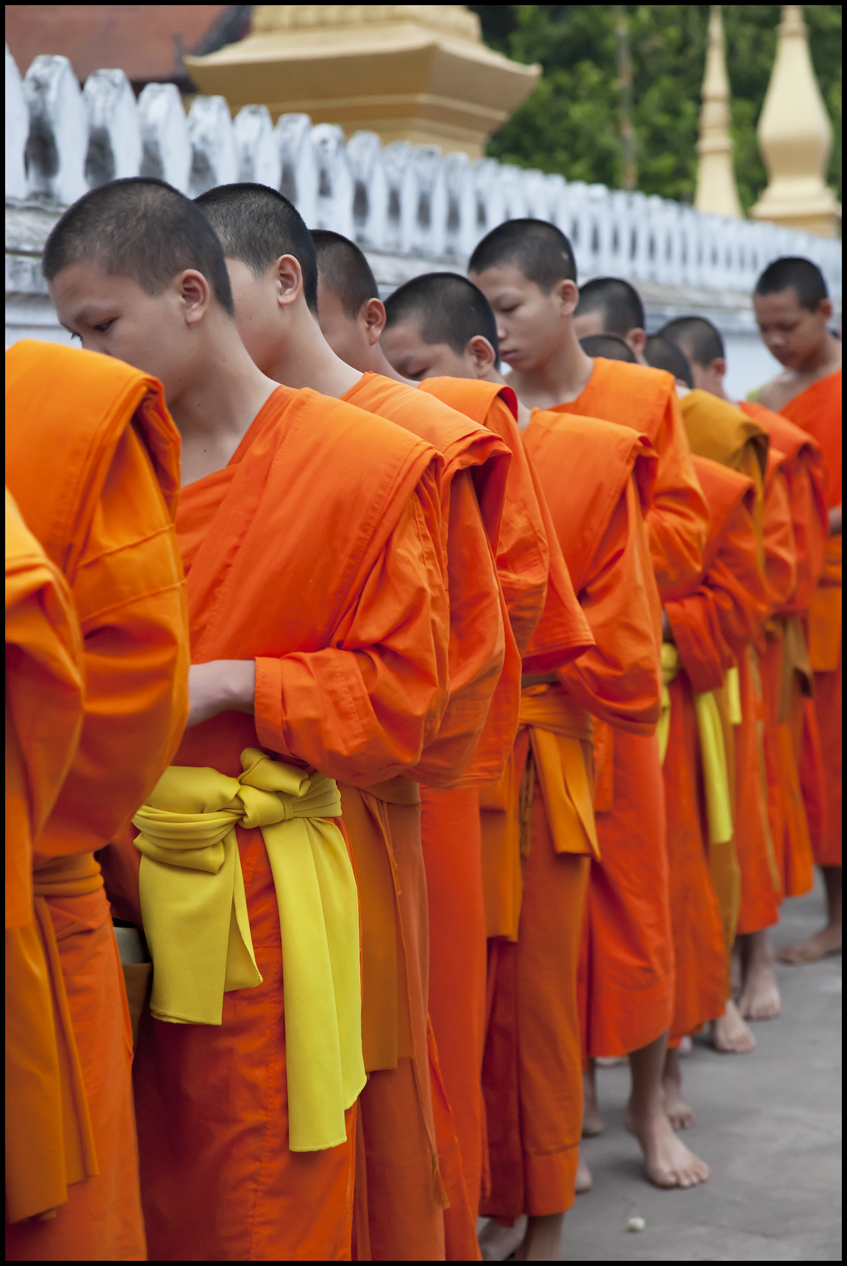 Teenage Monks 5-3-11 15 inch.jpg