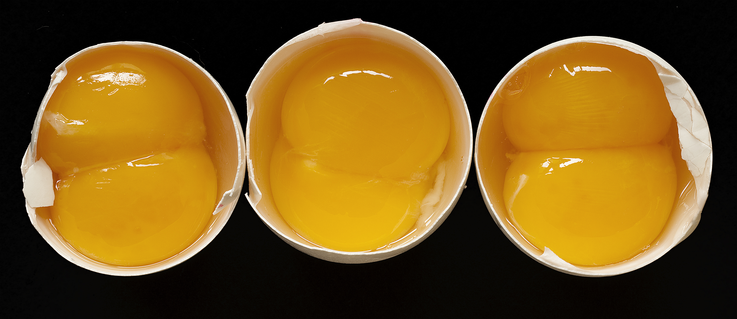 3 double eggs 10 inch.jpg