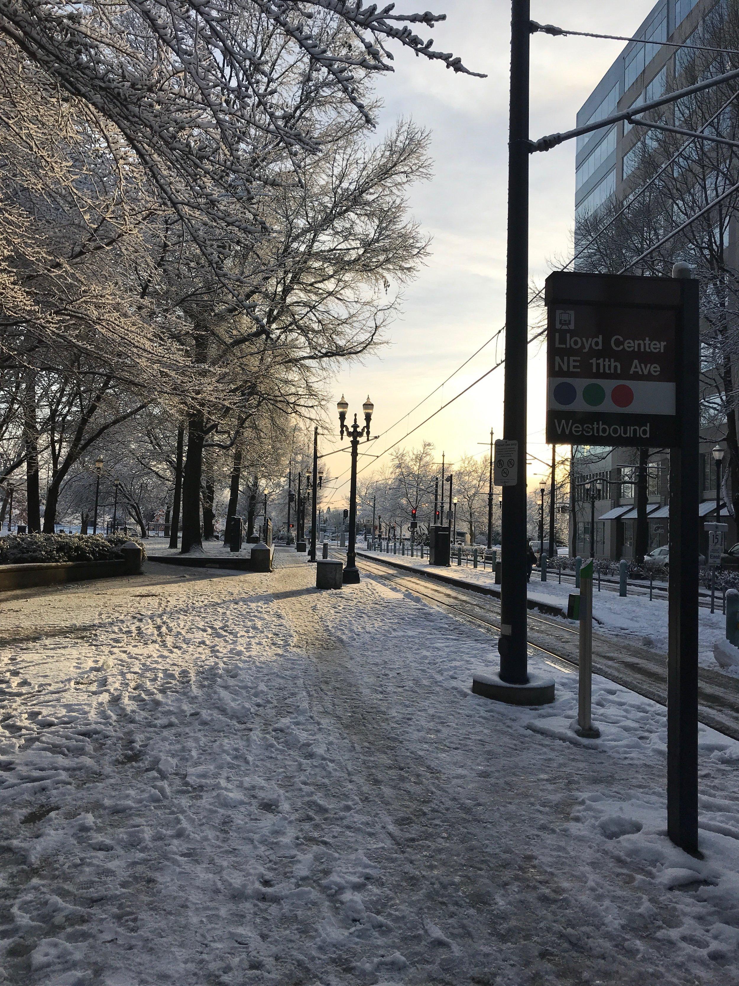 A rare, snowy day in Portland, OR.