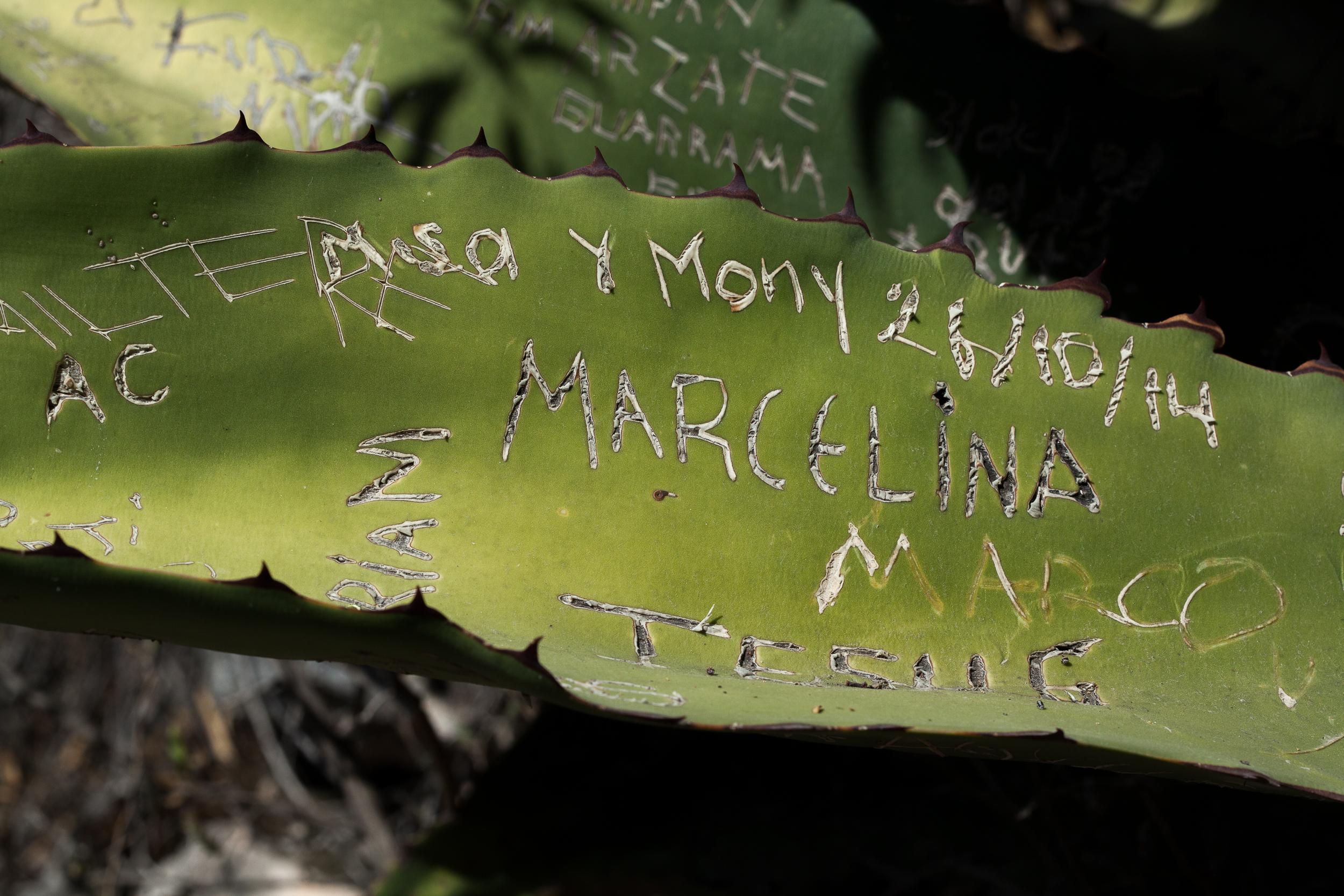 Chacon Images_Oaxaca_Travel_WEB_-2001.jpg