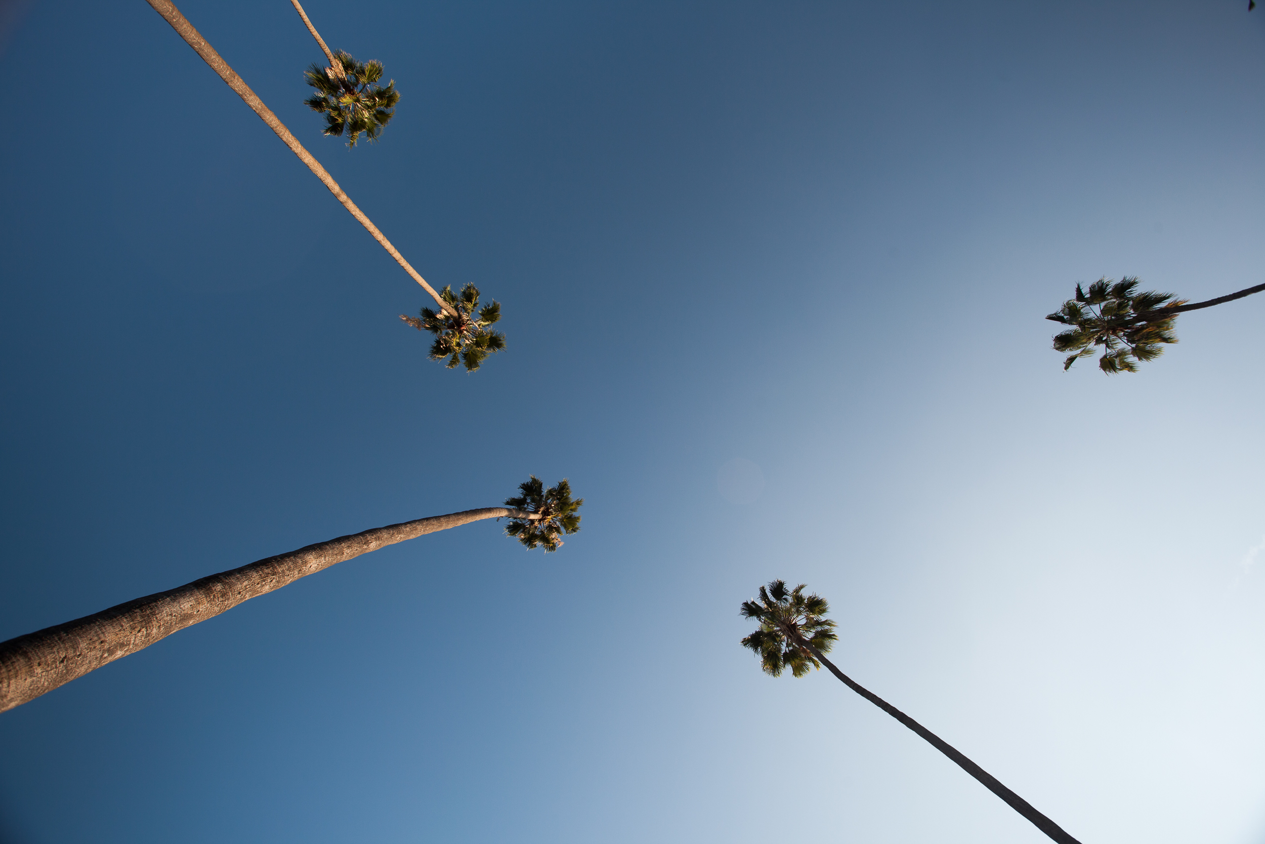 Chacon Images_LA_Travel_WEB_-6031.jpg