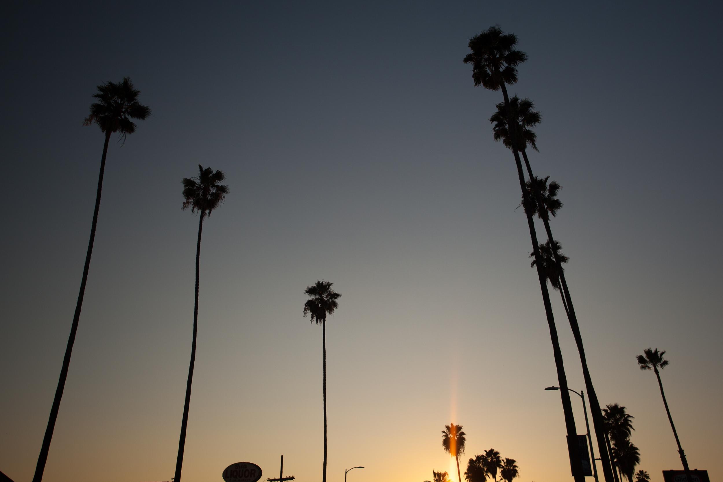 Chacon Images_LA_Travel_WEB_-6060.jpg