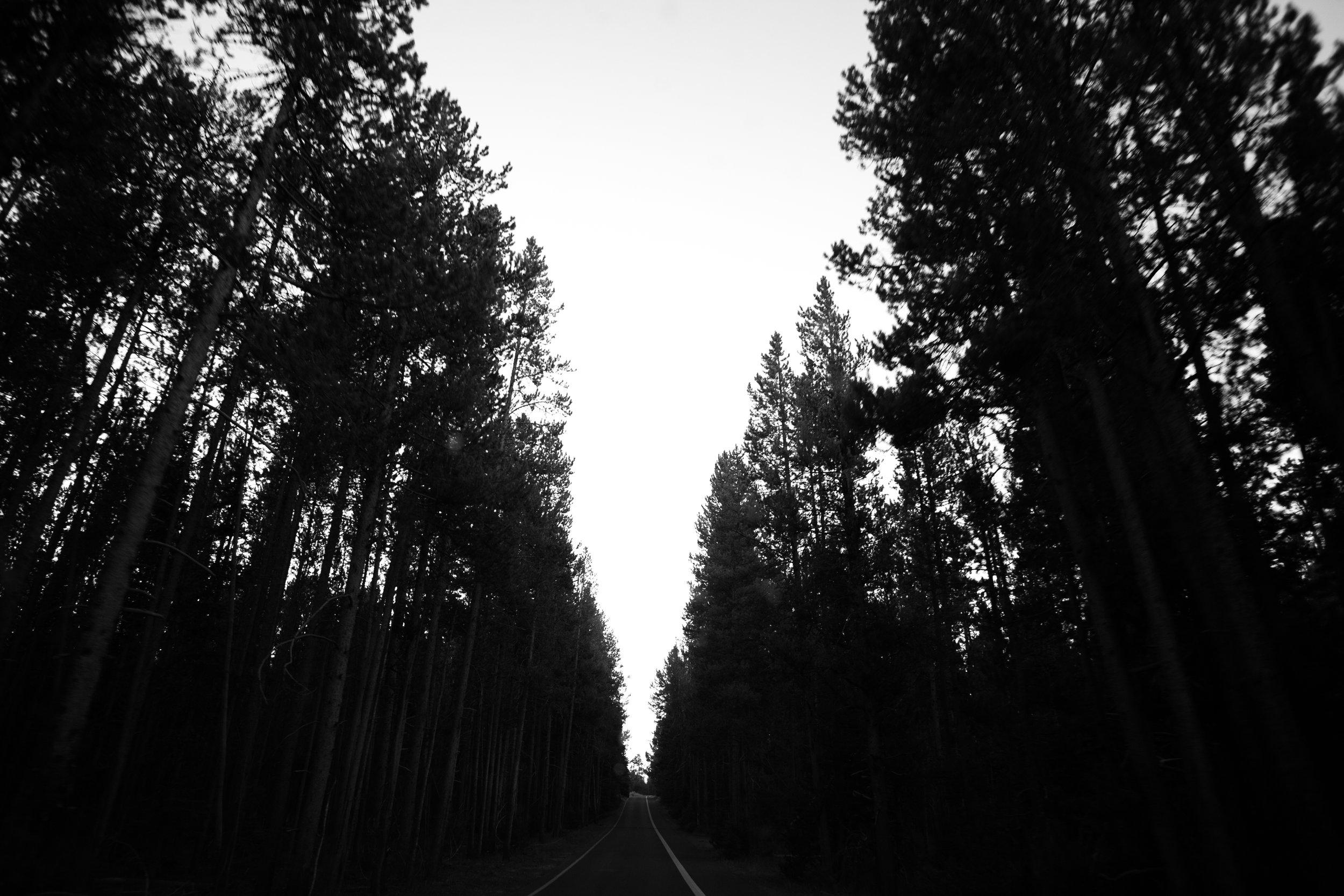 Chacon Images_RoadtripUSA_pt2_Print_-1648.jpg