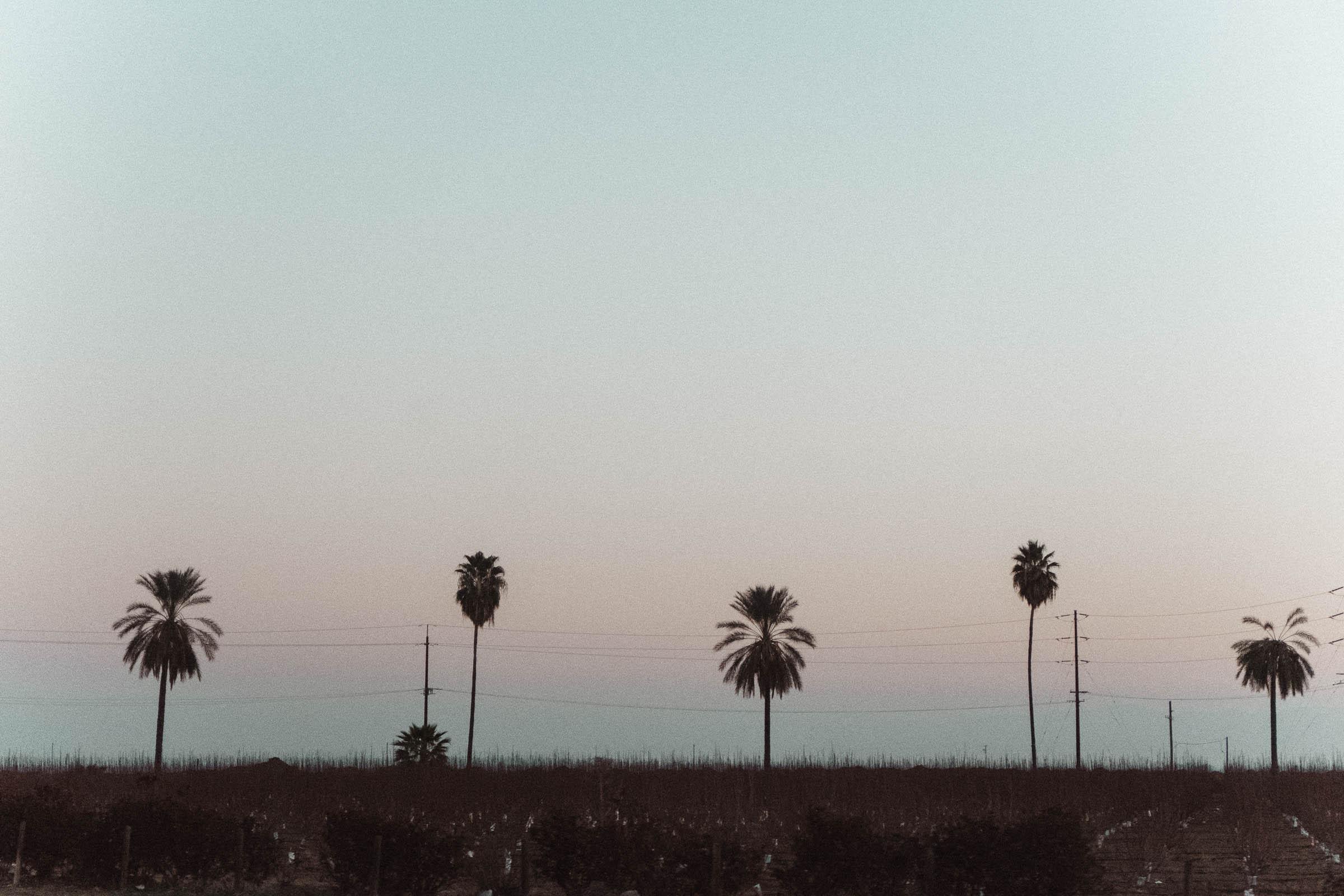 Chacon Images_LA_Web-53.jpg