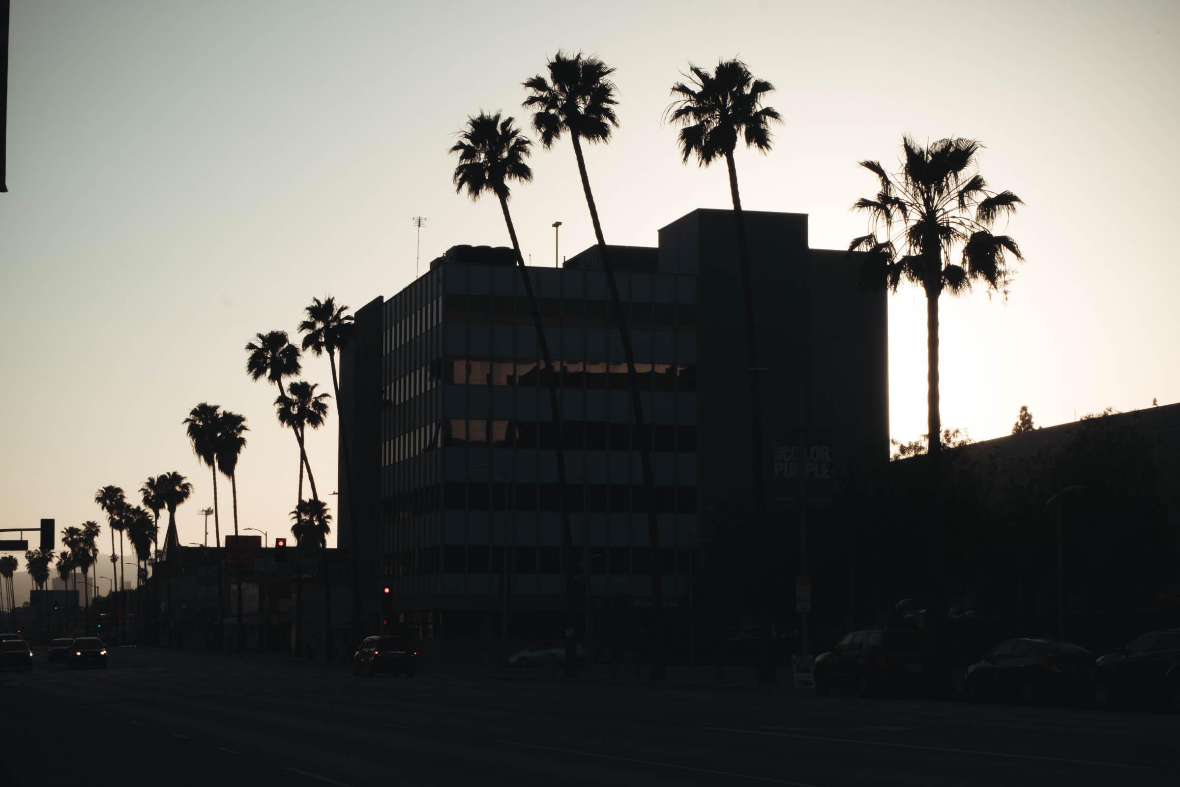 Chacon Images_LA_Web-203.jpg