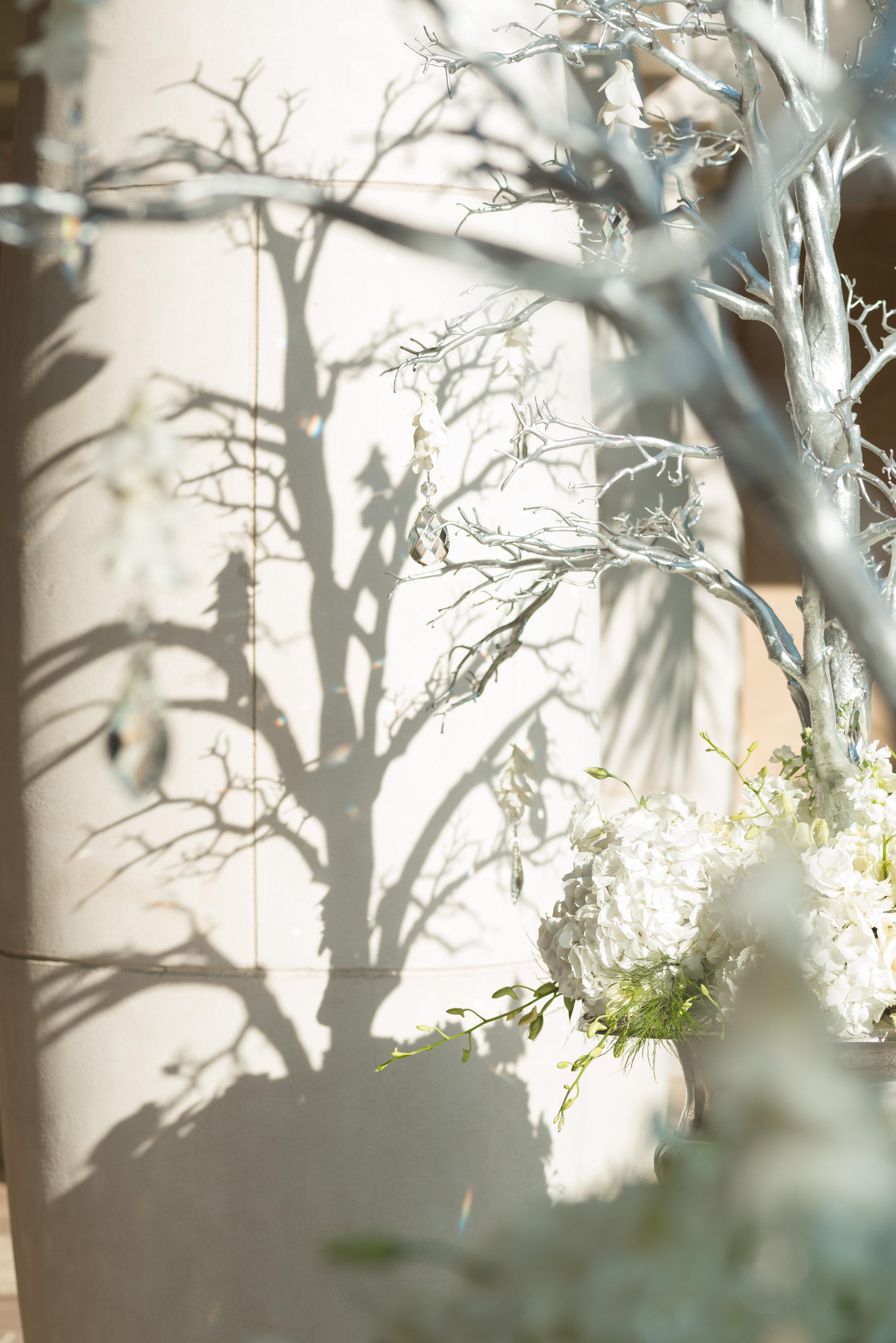 Carl-Kerridge-Photography-North-Beach-Wedding-May-2015-117.jpg