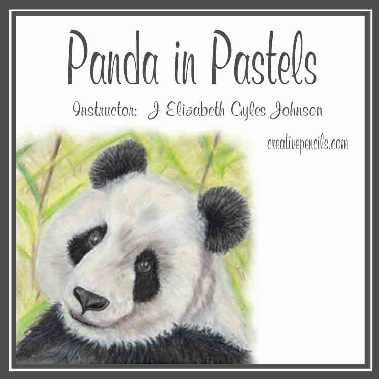 Panda in Pastels