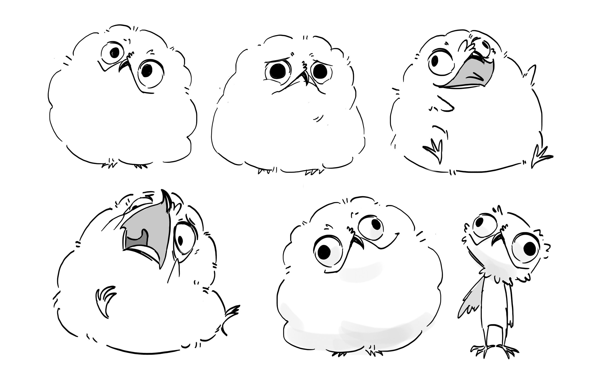 potoo bird floof.jpg