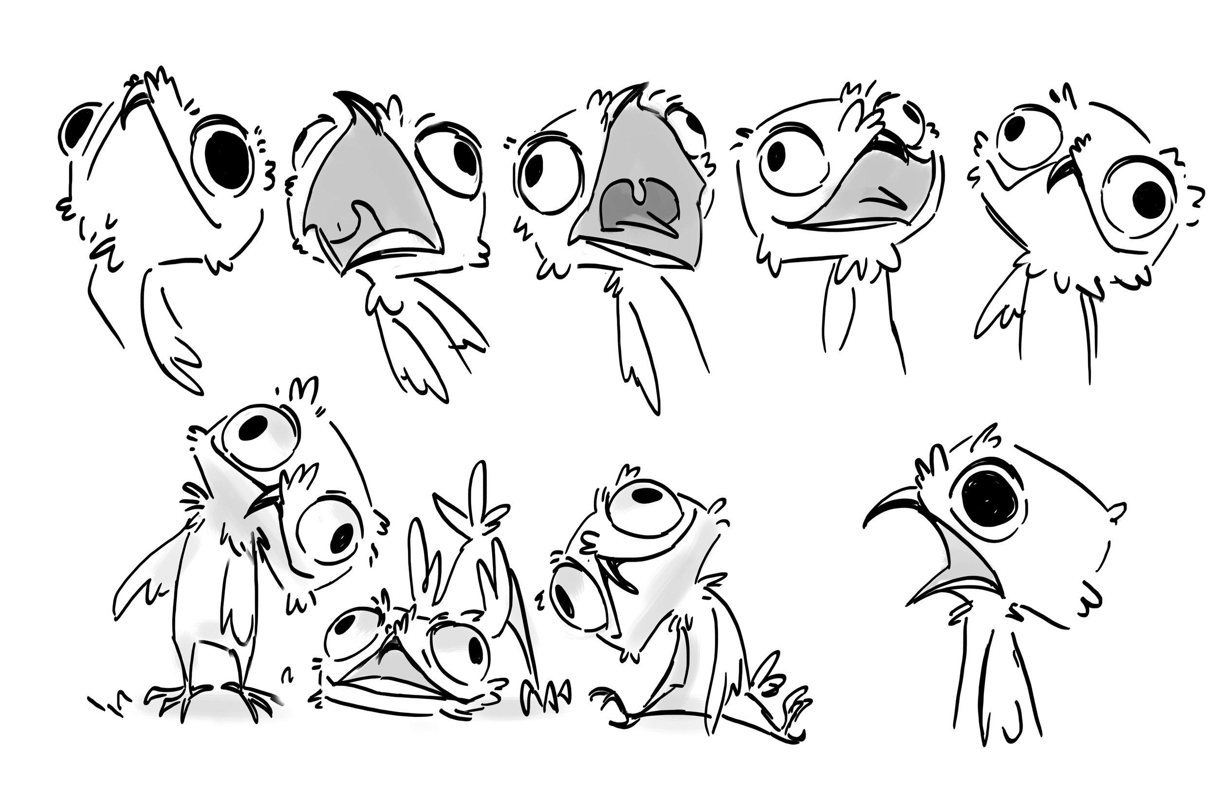 potoo bird .jpg