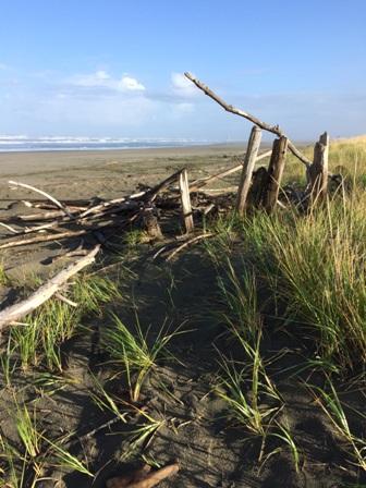 Ocean Shores, Washington State