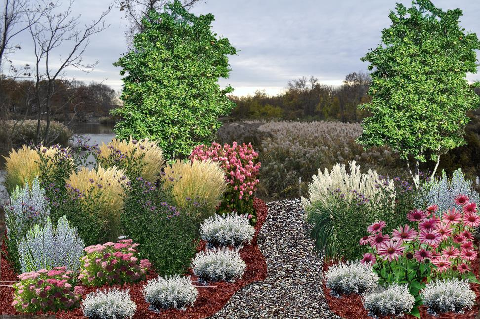 Meadow Garden Landscape Design