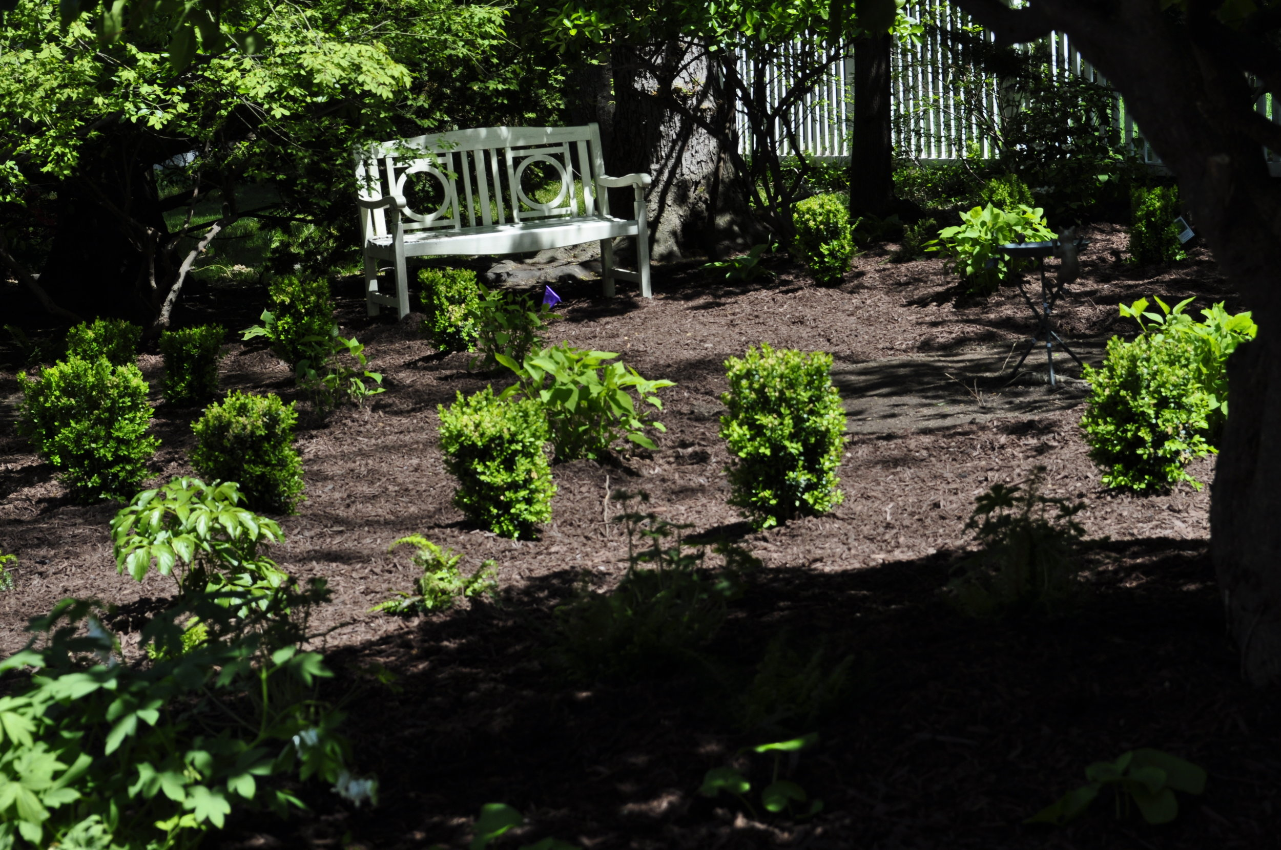 Small Shade Garden Design