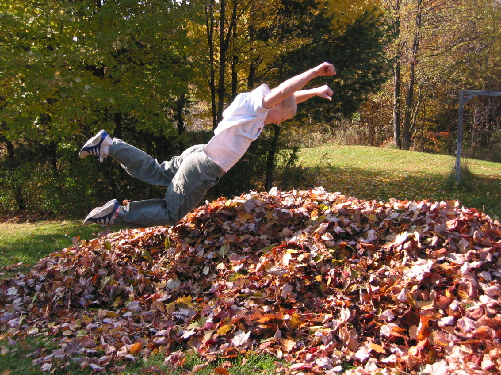 Fall_Cleanups_Bergen_County