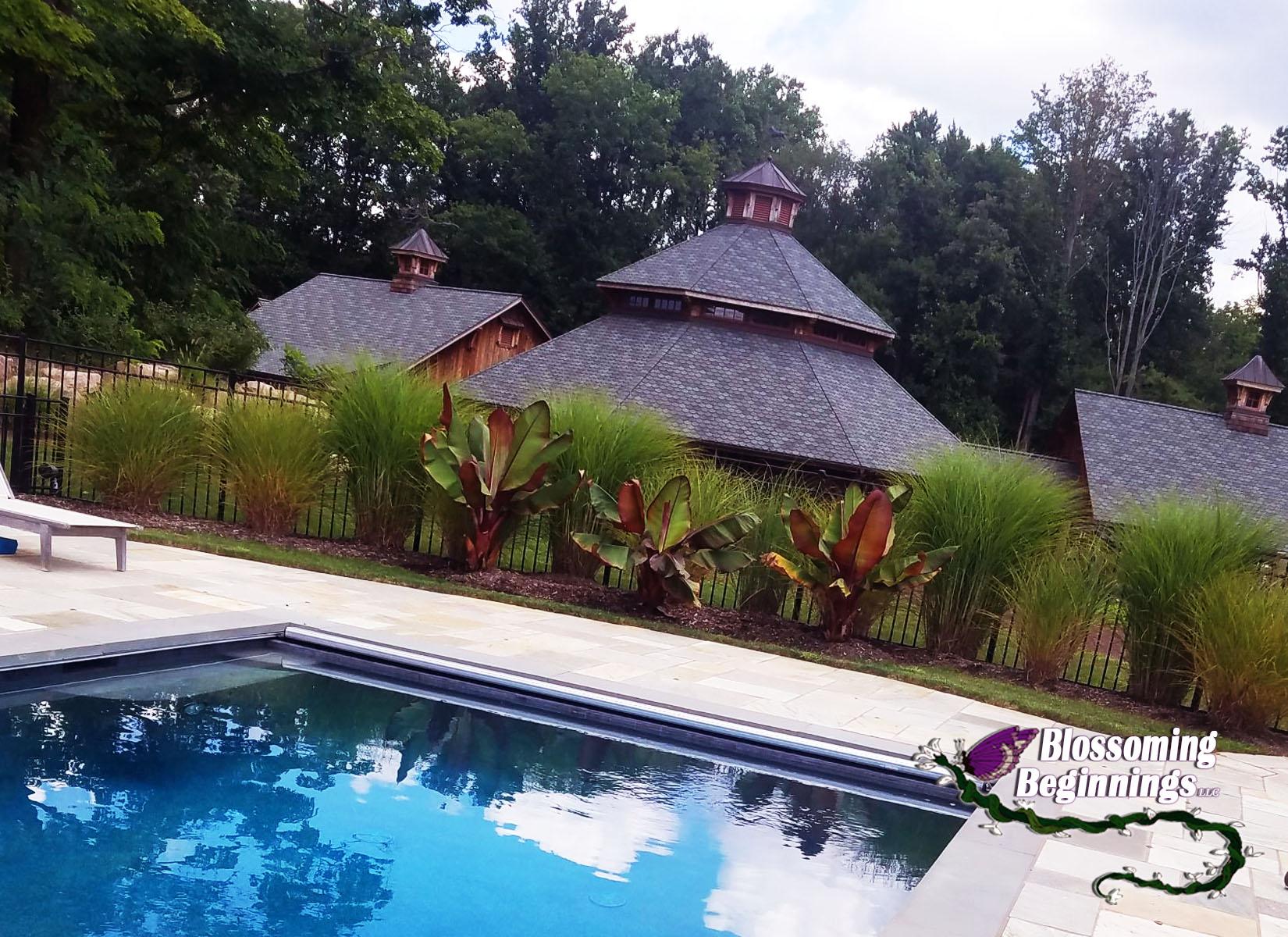 Residential Pool Landscape Design