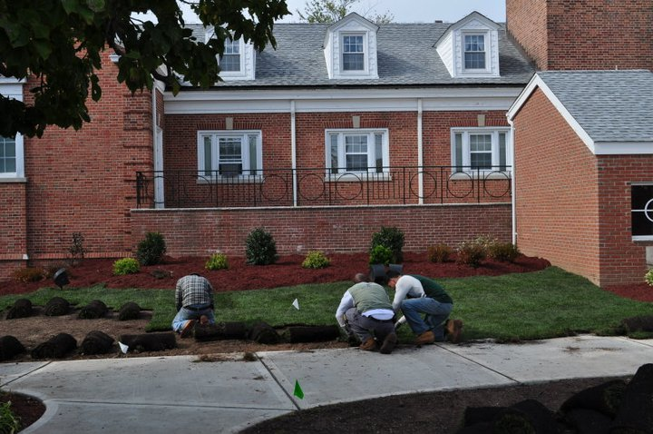 Sod Installation, North Arlington