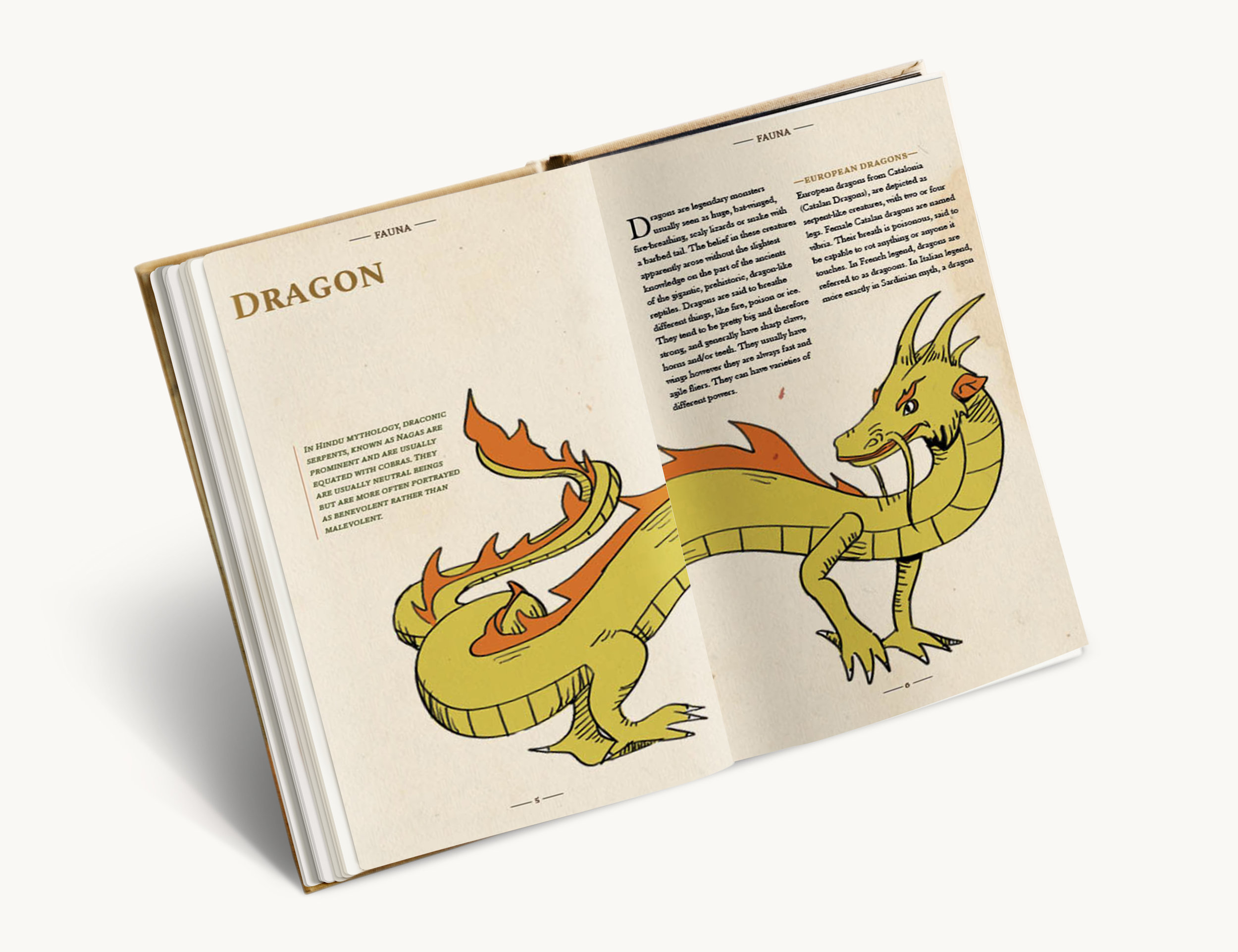 f2-dragon.jpg