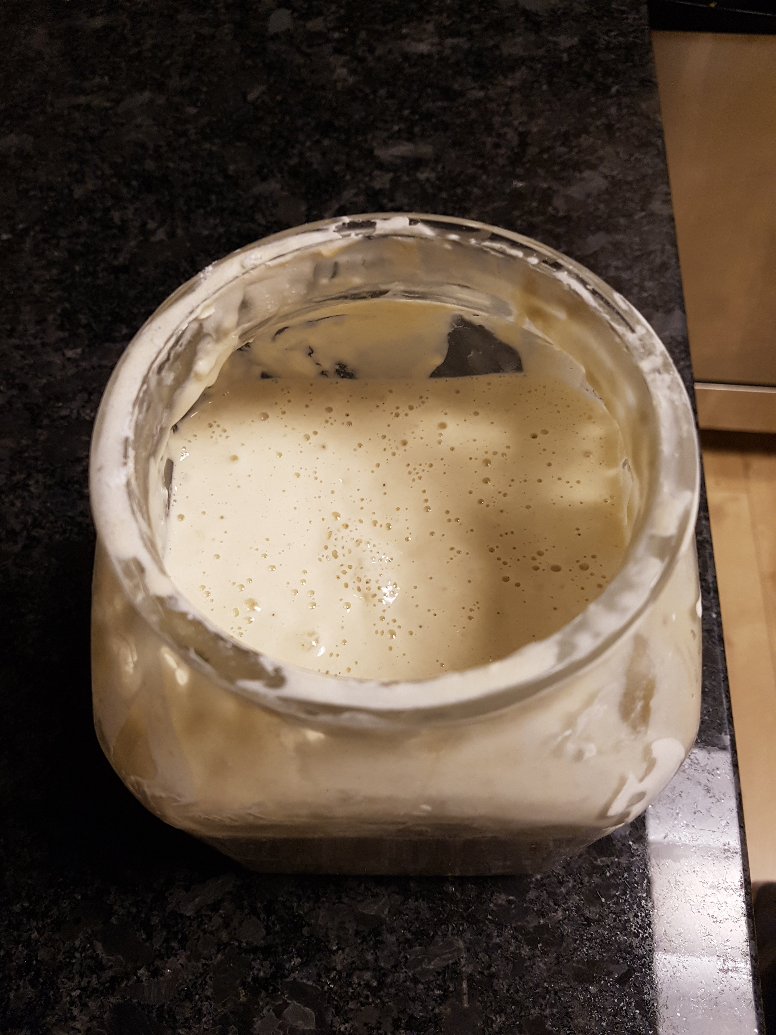 "I found out that there is a joke in the baking world about sourdough starter being a pet.  It's essentially a culture of bacteria, and you have to ""feed"" it new flour and water every day so that it gets more and more sour."