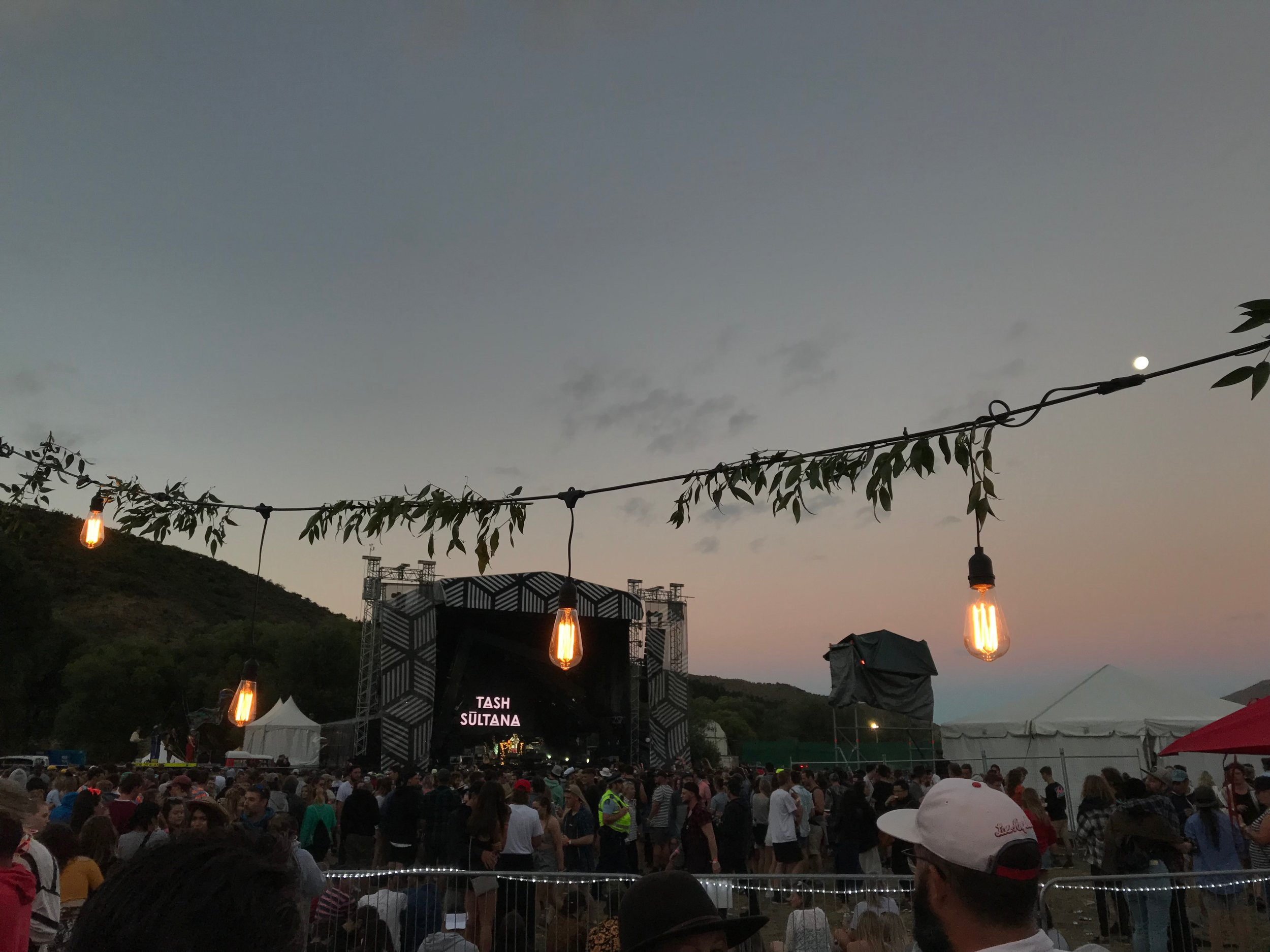 Festoons and foliage at Rhythm and Alps