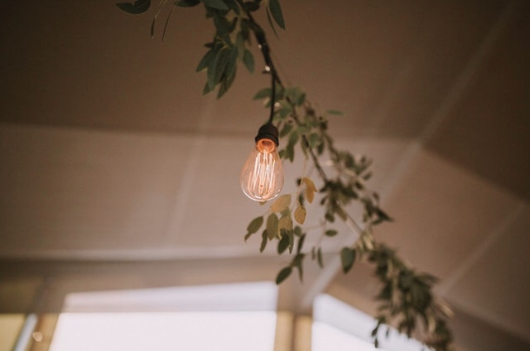 Festoons and foliage at The Winehouse