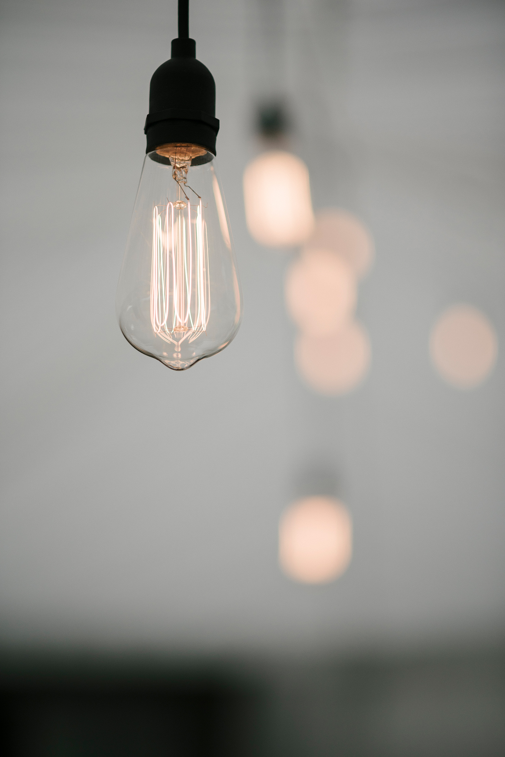 Festoon light Edison bulb