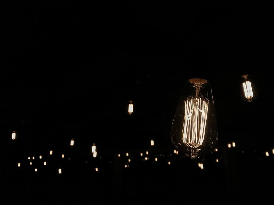 Festoon Edison bulbs