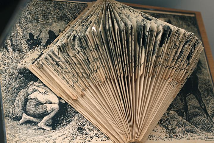 folded_book.jpg