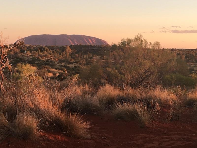 Uluru late afternoon